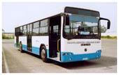 Bus Algérie